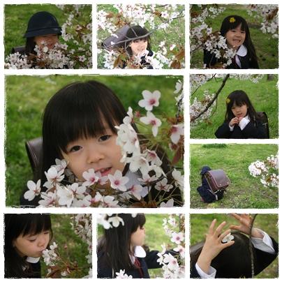 2010_sakura