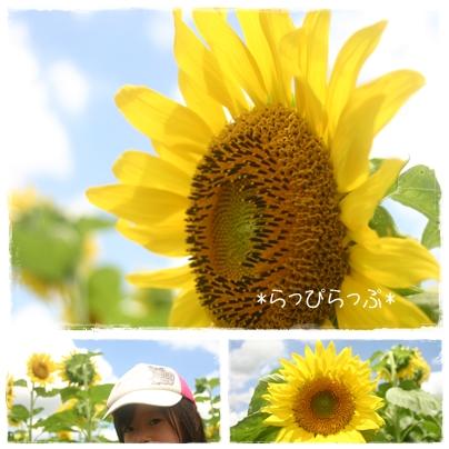 2010 summer photo3