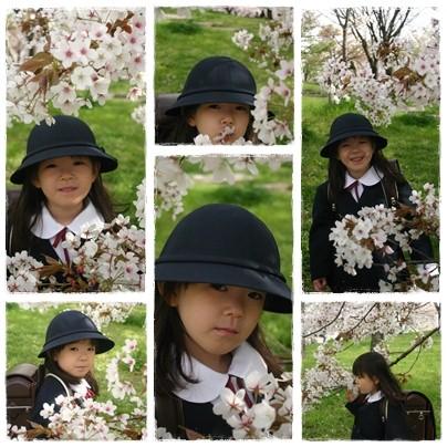 2010_sakura_2
