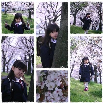 2010_sakura_3